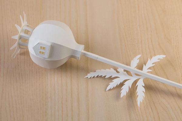 paperflower-diykit-06